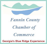 Fannin County Chamber of Commerce Logo
