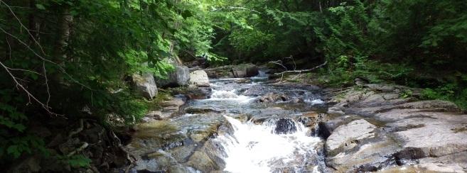 Mountain Water Falls Things to do in Blue Ridge GA