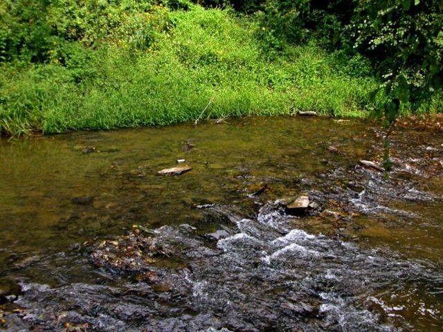 Blue Ridge Mountain Stream Near Cabin Rental