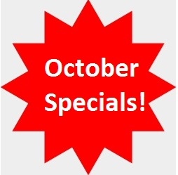 october special blue ridge georgia vacation cabins